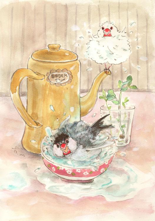 文鳥のお風呂